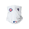 Chicago Cubs MLB Javier Baez On-Field Gameday Pinstripe Stitched Gaiter Scarf