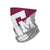 Texas A&M Aggies NCAA Big Logo Gaiter Scarf