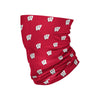 Wisconsin Badgers NCAA Mini Print Logo Gaiter Scarf