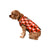 Cleveland Browns NFL Busy Block Dog Sweater