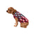 Houston Texans NFL Busy Block Dog Sweater