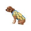 Los Angeles Chargers NFL Busy Block Dog Sweater