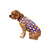 Minnesota Vikings NFL Busy Block Dog Sweater