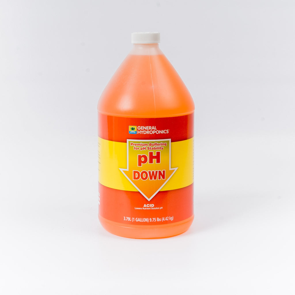pH Down Adjustment Solution (10%, 1 gal)