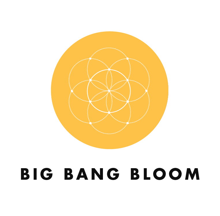 AmHydro Big Bang Bloom Plant Nutrients