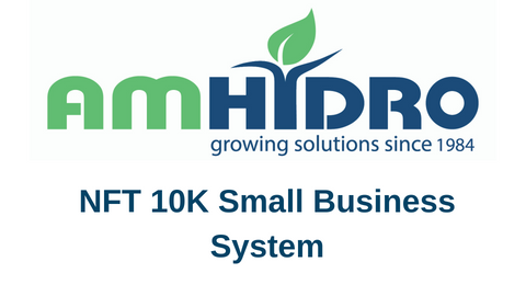 NFT 10K Small Business System