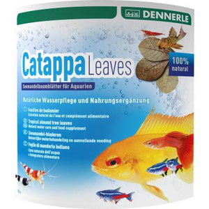 Dennerle | Catappa Leaves 4001615027440 Super Cichlids