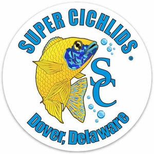 "Super Cichlids Large Sticker  (6"" x 6"") Super Cichlids"