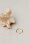 Internal Beauty Ring by Molly Debiak