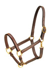 "Tory Leather 1"" Horse Halter  Single Crown Buckle, Snap Throat"