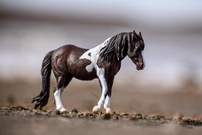 Breyer CollectA Bay Dartmoor Hill Mare