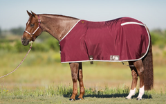 Stable Blankets & Sheets