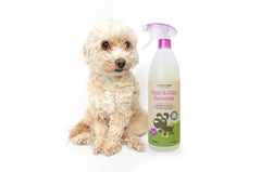 Earth Rated Stain and Odour Removers at Canadian Pet Connection