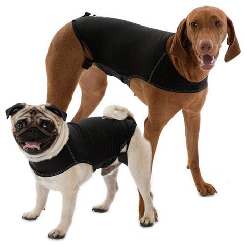 Anxiety Vest for Dogs sold online in Canada