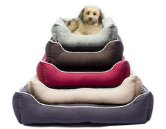 DOG GONE SMART Lounger Beds for Dogs - Canadian Pet Connection