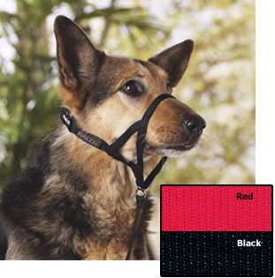 "HALTI Headcollars with ""Padded Nose Band"" for Dogs"