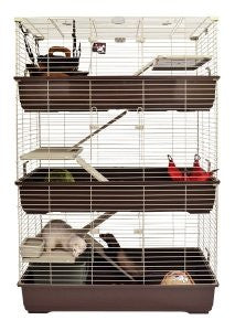 Marshall Townhouse II Add a Story Ferret Home