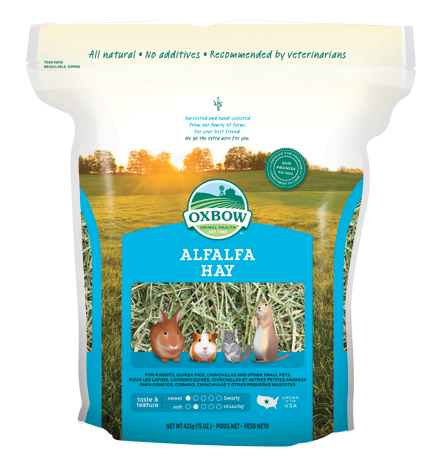 Oxbow Alfalfa Hay for Small Animals - Blue Bag - at Canadian Pet Connection