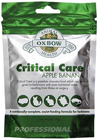 Oxbow Critical Care Premium Recovery Food for Small Animals - Apple and Banana