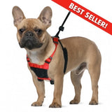 SPORN (YEP!) Mesh Non-Pull Harness for Dogs - Canadian Pet Connection