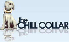 CHILL COLLAR - Small, Medium, Large, X-Large by Comfy Cone - Canadian Pet Connection