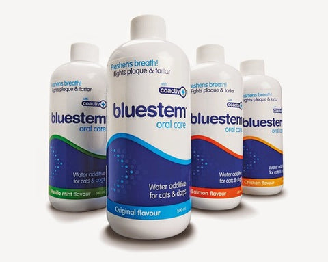 BLUESTEM Oral Care for Cats
