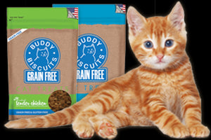 CLOUD STAR Buddy Biscuits for Cats (Turkey & Cheddar / Chicken / Tuna)