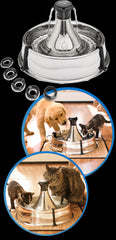 DRINKWELL® 360 Stainless Steel Pet Fountain - Canadian Pet Connection