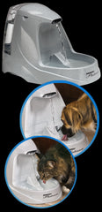 DRINKWELL® Platinum Pet Fountain - Canadian Pet Connection
