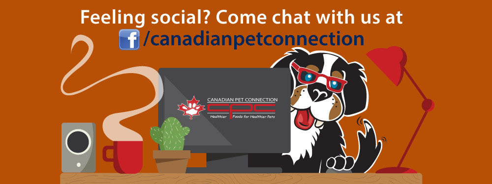 Canadian Pet Connection