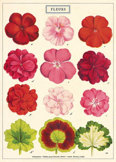 Floral Posters
