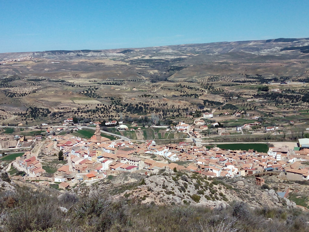 Where olive oil springs from the land: Oliete (Spain)