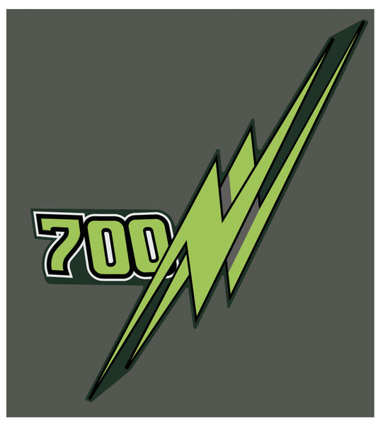 Arctic Cat 1991 Wildcat Top of Hood Decal