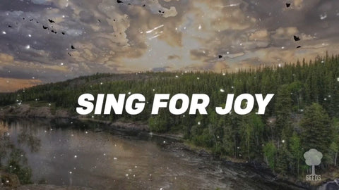 Sing For Joy Music Video - Seeds Family Worship