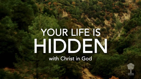 Your Life Is Hidden Music Video - Seeds Family Worship