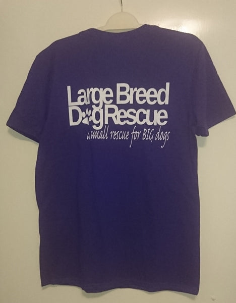 LBDR T-shirt (Purple)