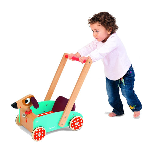 Crazy Doggy Wooden Push Toy