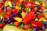 Mixed color ornamental pepper seeds
