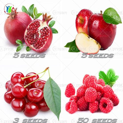 Four Fresh Red Fruit MIxed Seeds