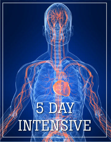 Five Day Intensive, Santa Ana, CA,  July/August  2019