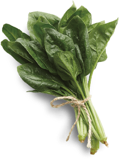 Spinach background image
