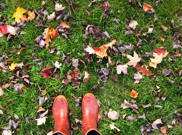 Fallen Leaves and Rainboots