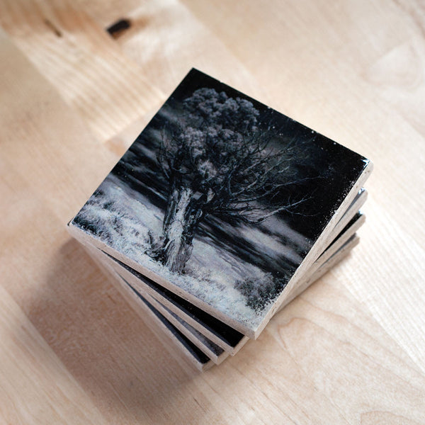 Tree Coasters by Ink the Print