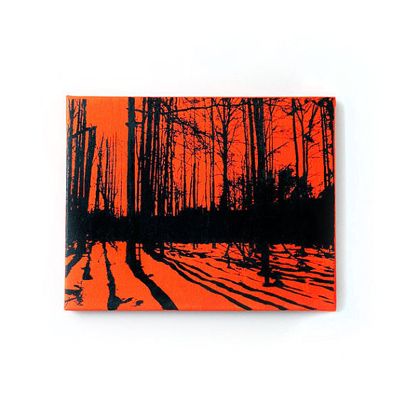 Trees and Shadows Nature Canvas Wall Art