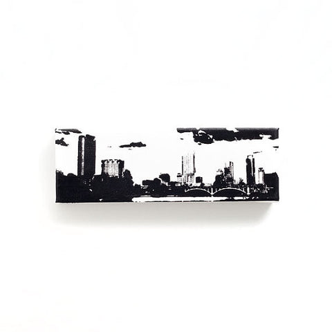 Austin Skyline Canvas Wall Art
