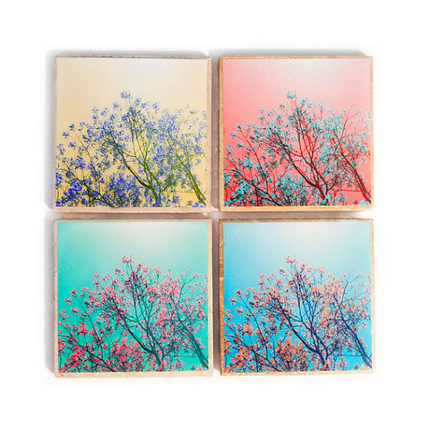 Blooming Trees Coaster Set