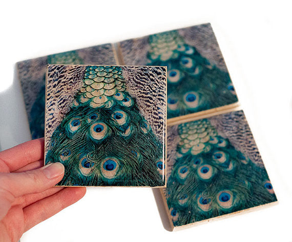 Peacock Bird Coasters
