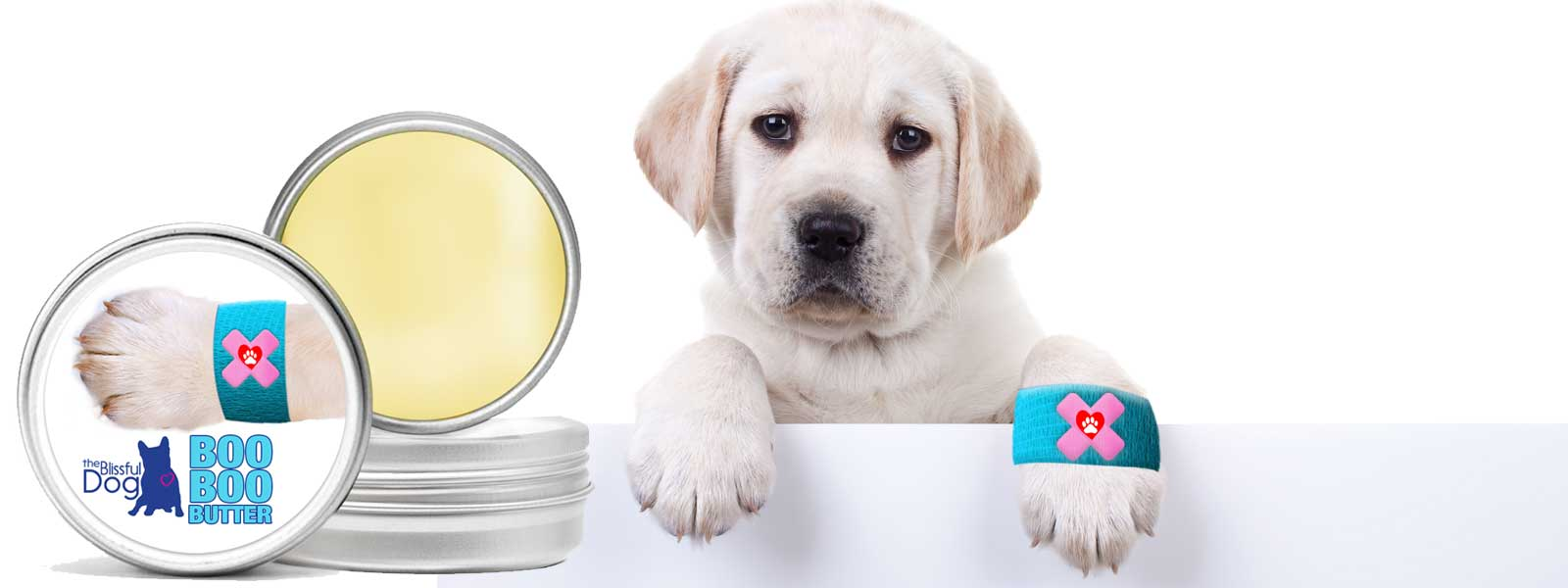 Herbal balm for dogs