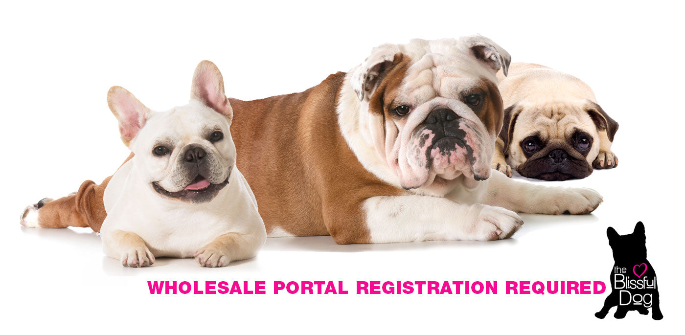 the blissful Dog Wholesale Portal