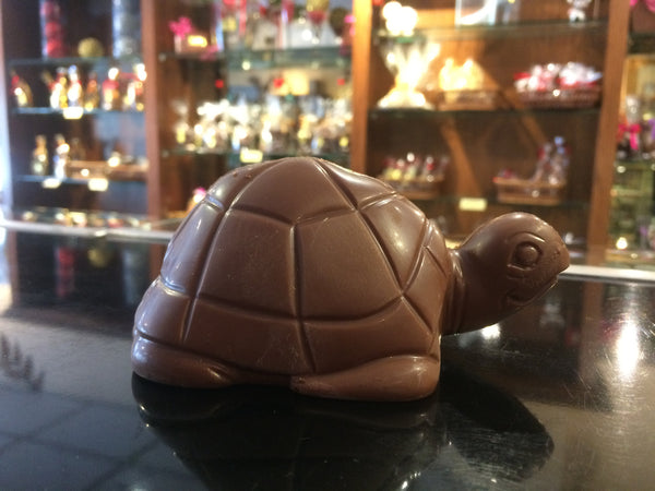 Chocolate Turtle
